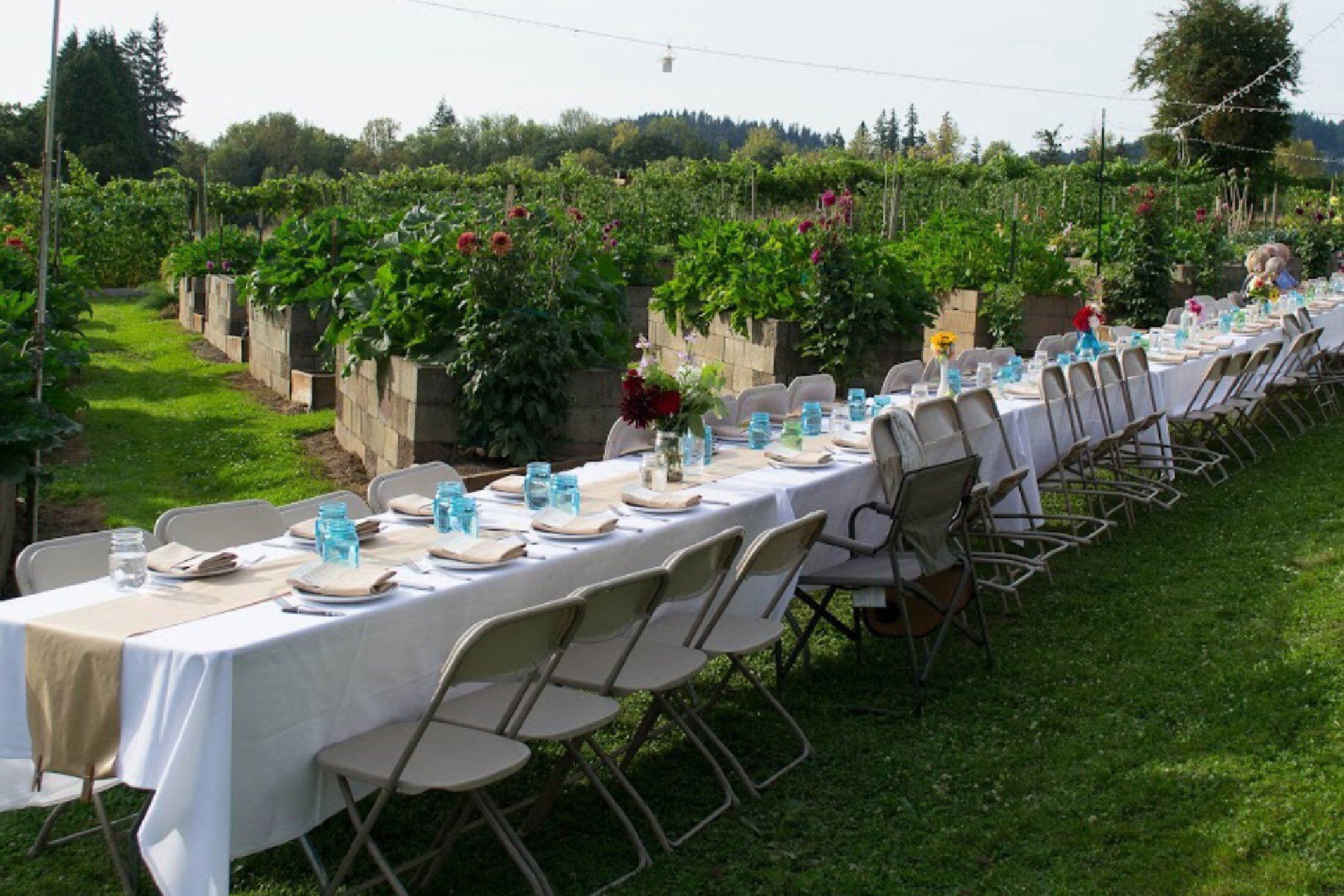Fiala Farms Farm to Table Dinner Events West Linn Oregon