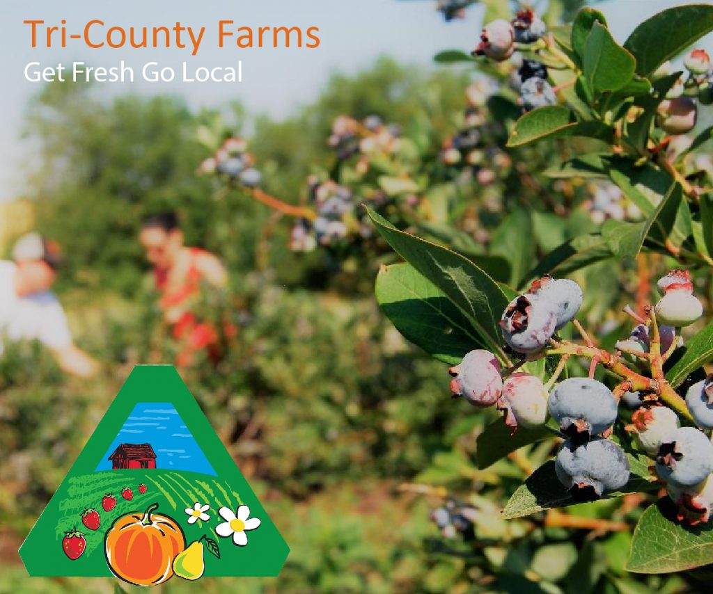Tri County Farm Fresh Produce