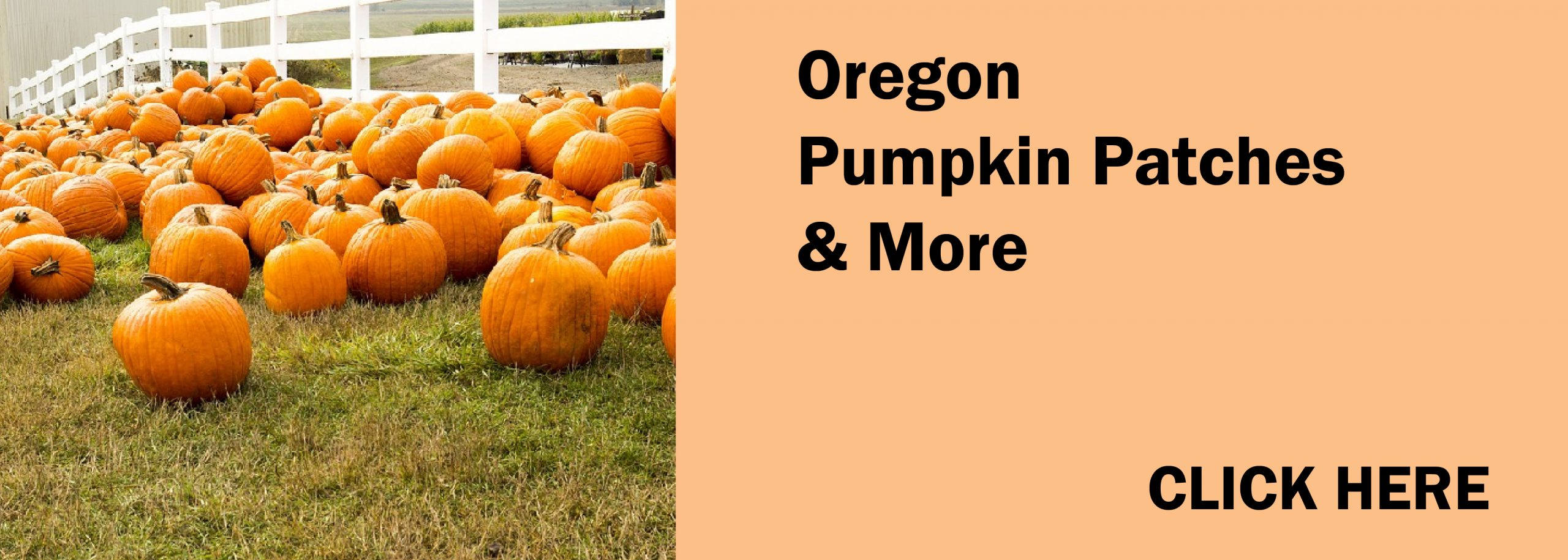 Oregon Pumpkin Patches & More 2021